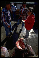 Halibut caught by tourists in Homer, Alaska.