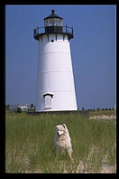 Alex and the Edgartown Lighthouse, Martha's Vineyard (Massachusetts)